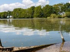 Buitenzwemmers opgelet: blauwalg in water bij Zoeggat in Staphorst