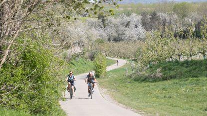Vanaf nu kan je ook vanuit je kot fietsen tussen de bloesems