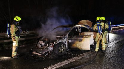 Auto brandt volledig uit op E17, twee inzittenden blijven ongedeerd
