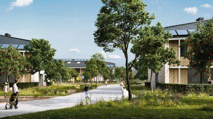 """Nieuwe verkaveling in Ooststraat krijgt vermoedelijk in januari al vergunning: """"Eerste bewoners moeten er tegen eind volgend jaar in kunnen"""""""