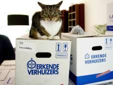 Idee ChristenUnie Harderwijk: reserveer middenhuur voor middeninkomens