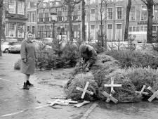 Het 'Sint-Jansbos' was ooit de grootste kerstbomenmarkt van Utrecht