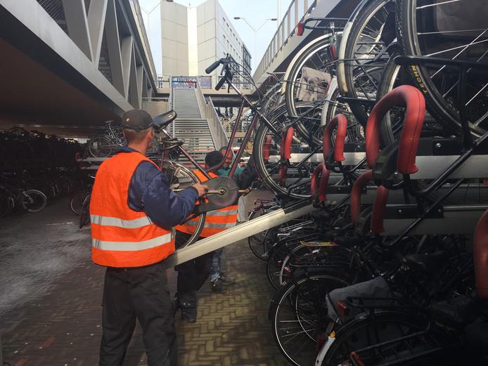 Medewerkers van Tactory zetten verkeerd geparkeerde fietsen in de stalling bij het NS-station en markeren langparkeerders.