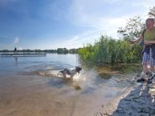 Hondje zakt weg in 'drijfzand' bij Zegerplas