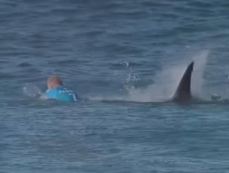 Haai valt wereldkampioen surfen aan, vervolg is beklijvend
