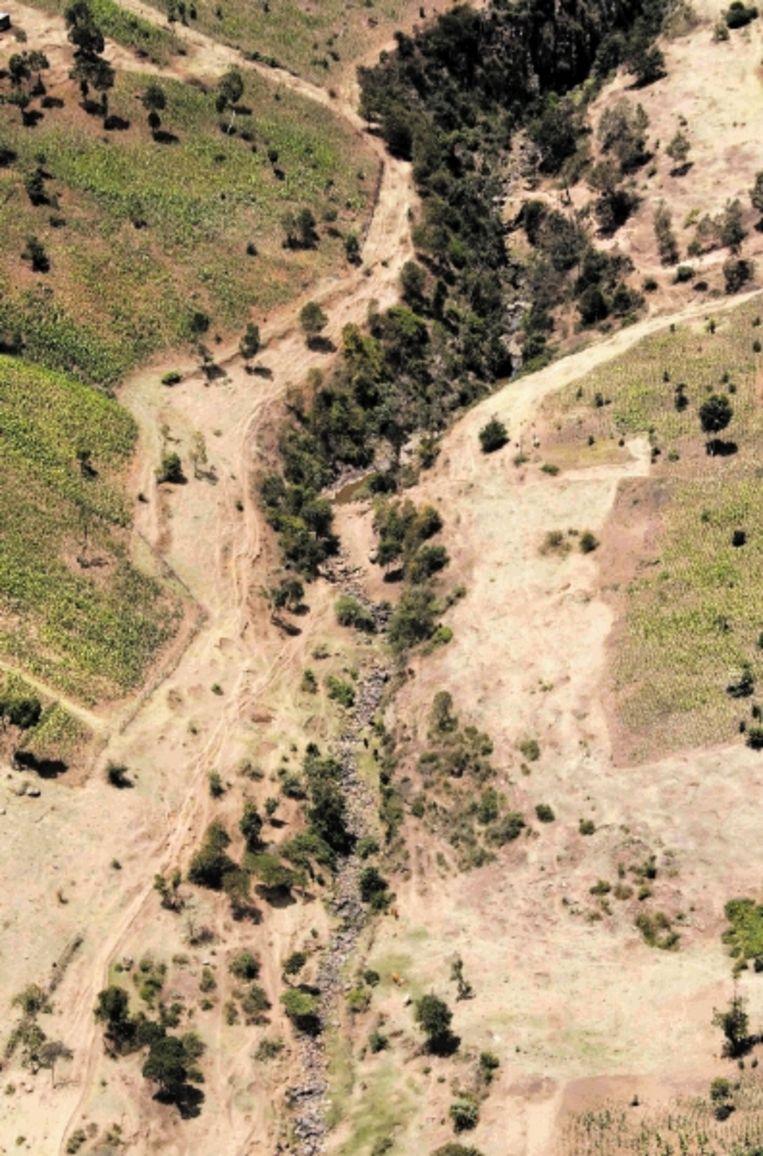 Een rivier, die in de Mau ontspringt, is vrijwel drooggevallen. (FOTO EPA) Beeld