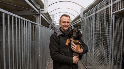 """""""Binnenkort nieuws over vergunning dierenasiel Poezewoef. En de honden krijgen ondertussen wel alle zorgen"""""""