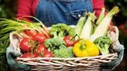 Wekelijkse markten en boerenmarkten gaan niet door in politiezone Vlaamse Ardennen