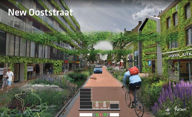 Zo zou de Ooststraat er kunnen uitzien, met groenslingers en hangende tuinen.