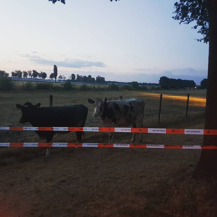 Vanwege de veiligheid is de weg tussen Tilburg en Hilvarenbeek.