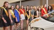 Tien dames willen Eikoningin worden en vijf mannen nemen deel aan verkiezing Eierboer in Kruishoutem