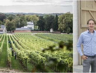 """""""Wie wil er nu een wijnkasteel in Frankrijk als je dit kan krijgen?"""" Familie Vandeurzen teelt Spaanse en Franse druiven in hartje Hageland"""