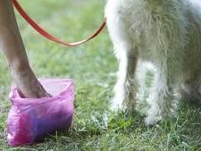 Piet Fase hangt bewakingscamera's op om daders hondenpoep op te sporen
