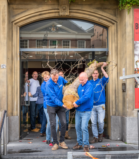 Boom van Tolerantie verhuist van Gorcums Museum naar Limburg