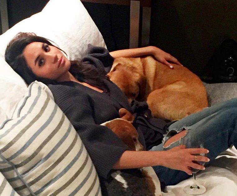 Meghan Markle met haar honden Bogart en Guy