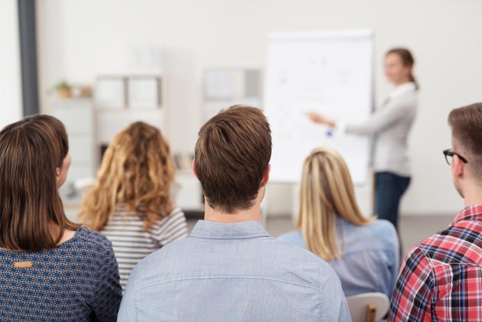 Bij 43 procent van de werkgevers mag het budget worden besteed aan trainingen en coaching.