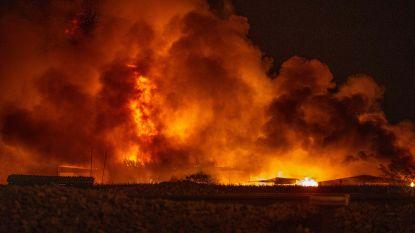 Inferno legt schrijnwerkerij en verhuurbedrijf volledig in de as in Opwijk