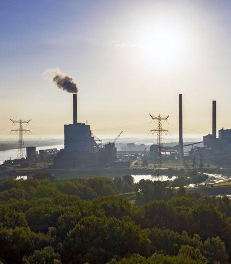 Johan Vollenbroek: na stikstofzaak volgt nu biomassastrijd