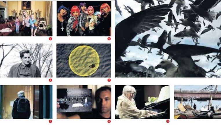 Collage van scènes uit de getipte documentaires. Beeld de Volkskrant