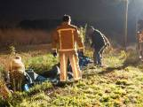 Paard overlijdt na botsing met motorrijder in Budel