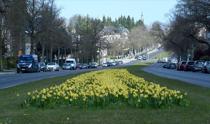 L'avenue Franklin Roosevelt, à Bruxelles.