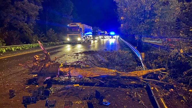 Spectaculair ongeval: vrachtwagen komt in middenberm terecht en ontwortelt boom
