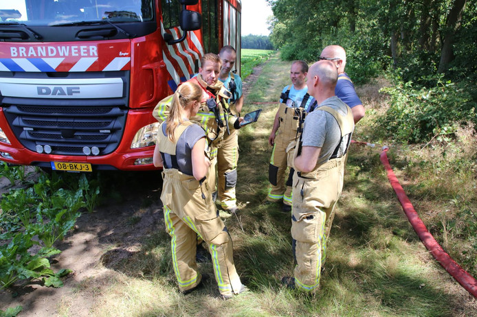 Felle bosbrand in Vessem.