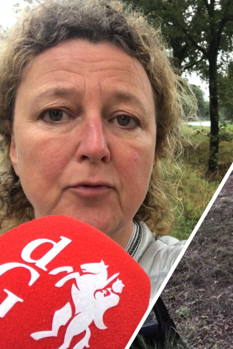 Moeder van gezin dat in Groenlo tegen boom botste heeft botbreuken