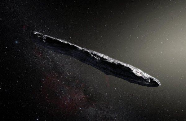 Buitenaards leven doorkruist Melkweg 'liftend op kosmische ark van Noach'
