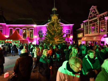 Hekken moeten Vlaardingse kerstboom beschermen tegen vandalisme