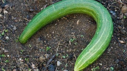 Ook dit is droogte: vergeelde bloemkolen en kromme komkommers
