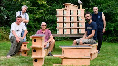 Werkgroep verspreidt zestig nestkasten om steenuilen meer kansen te geven
