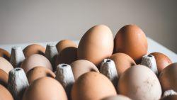 Fit- & gezondupdate: eieren zijn toch niet slecht voor je gezondheid en andere nieuwtjes