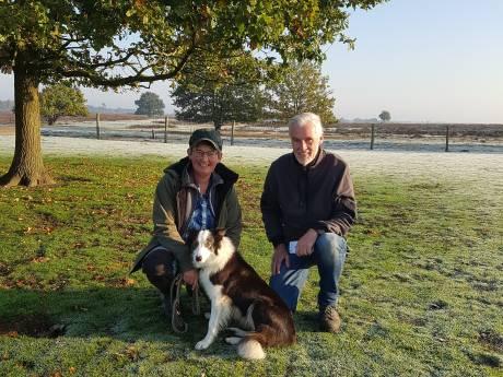Ermelose herder zielsgelukkig met superhond Nan, de Ferrari onder de schapenhoeders