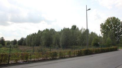 Lennik zorgt voor plaatsing van zes vleermuiskasten (onder meer aan sporthal Jo Baetens en het nieuwe speelbos)
