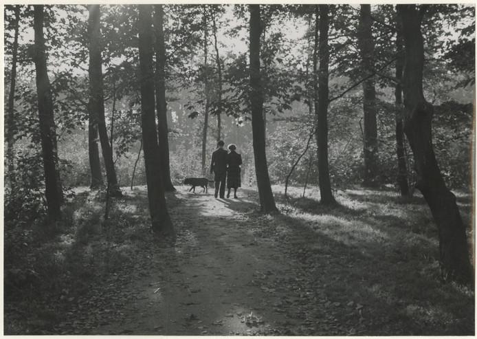 Precies zó liepen oom en tante iedere avond door het bos in 1960.