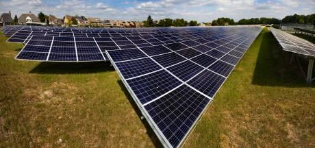 Brabantse politiek wil tijdelijke stop op zonneweides