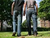 Jongens (14 en 20) vast voor zware mishandeling homo's in Arnhem met betonschaar