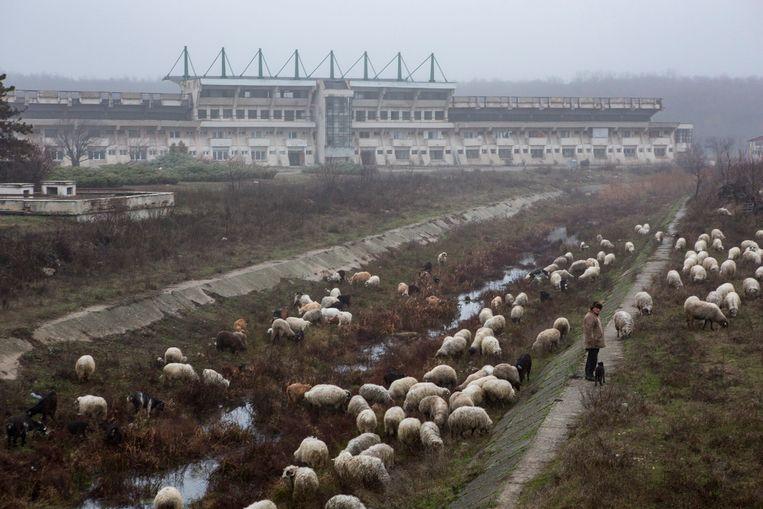 Het vervallen stadion van FC Olt-Scornicesti. Beeld Julius Schrank