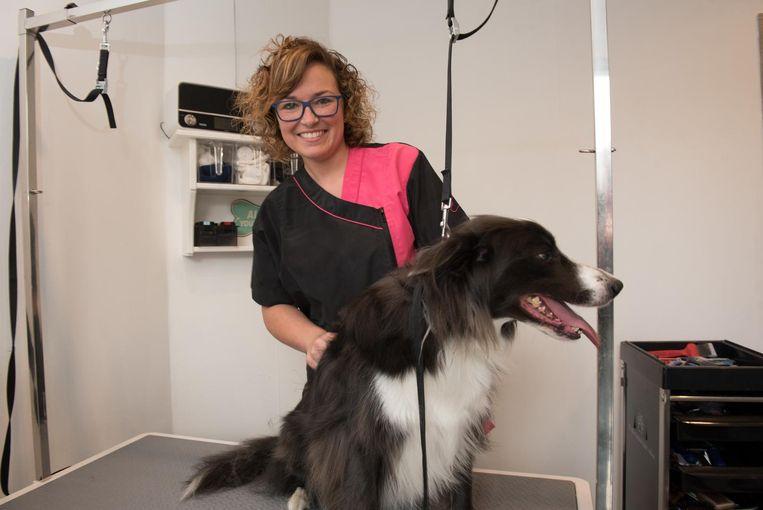 Kimberly Van Lancker kamt een hond.
