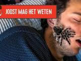 Kruipen spinnen echt je mond in als je slaapt?