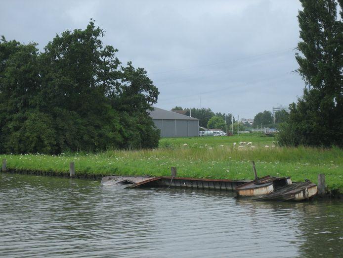 Half gezonken weesbootje in De Lier.
