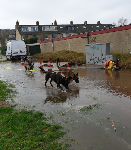 Straat in Schothorst blank door gesprongen waterleiding