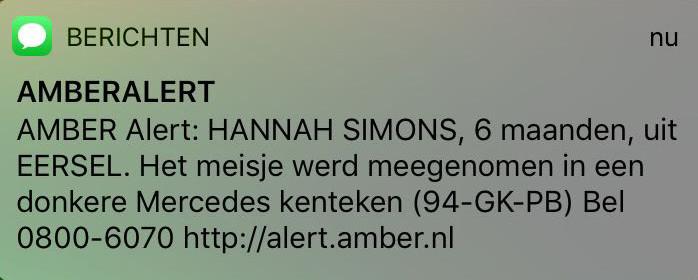 Afbeelding Amber Alert