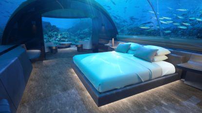 Kopje onder: slapen tussen de vissen voor 50.000 euro per nacht