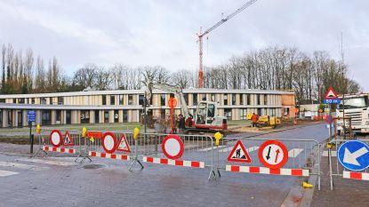 """Bomen in Statiestraat geveld omdat ze afgestorven waren: """"We nemen geen risico"""""""