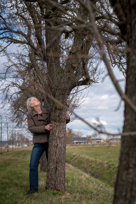 Margreet Jellema bij een oude perenboom in Elst.