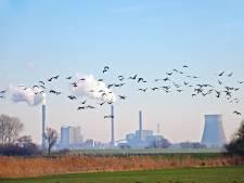 Uitstoot methaangas in gemeente Nuenen het hoogste van Brabant