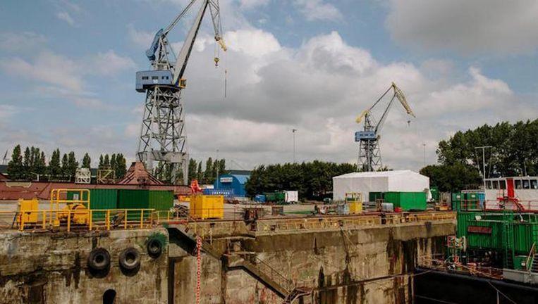 Damen Shipyard op het NDSM terrein in Amsterdam-Noord. Beeld Marc Driessen