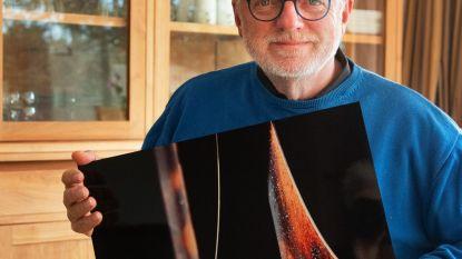 """Al 3 jaar met pensioen, maar fotograaf Filip Santens (68) blijft prijzen verzamelen: """"De 'kick van de klik' gaat niet weg"""""""